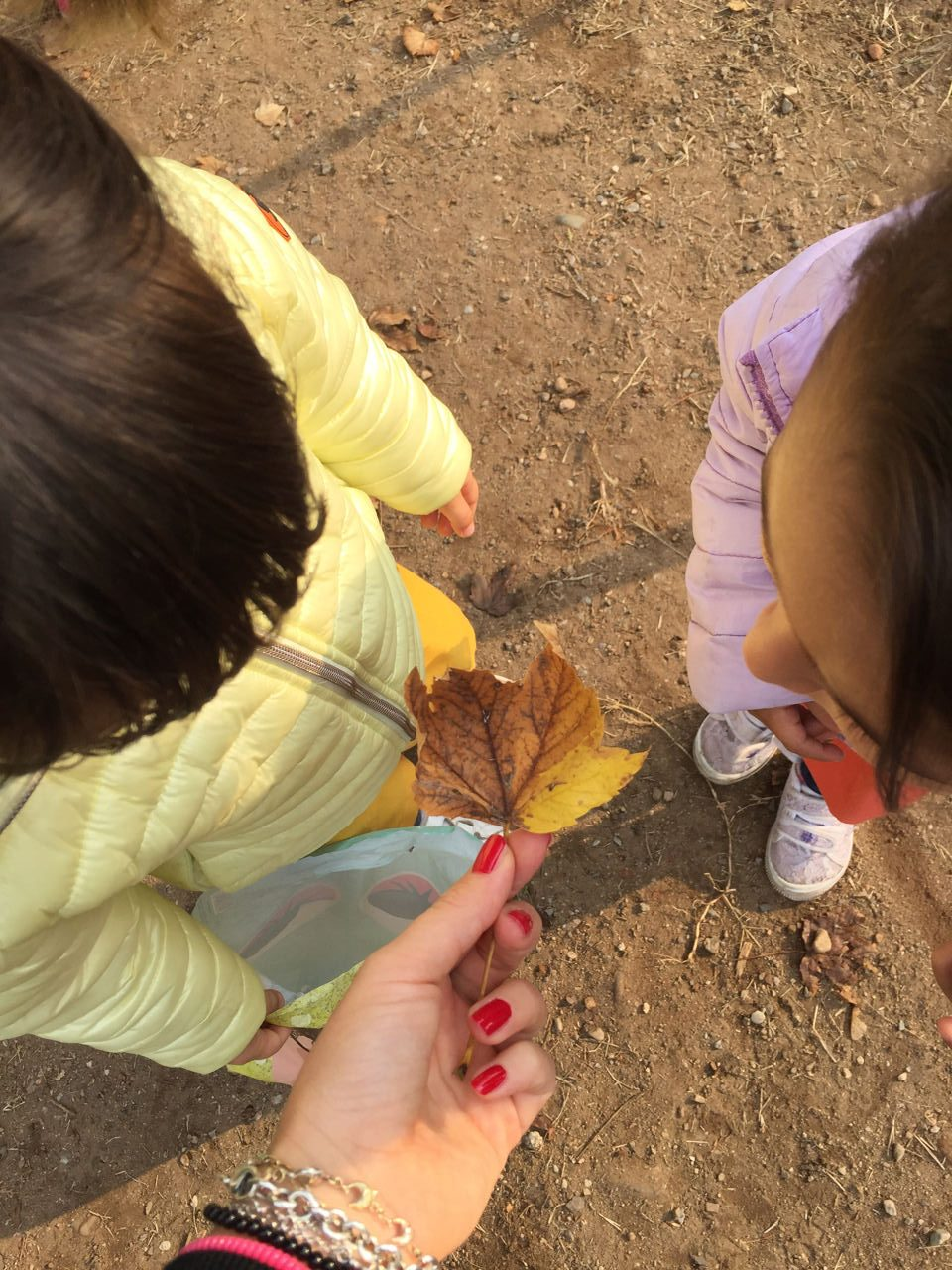 Creatività di Gruppo - L'autunno