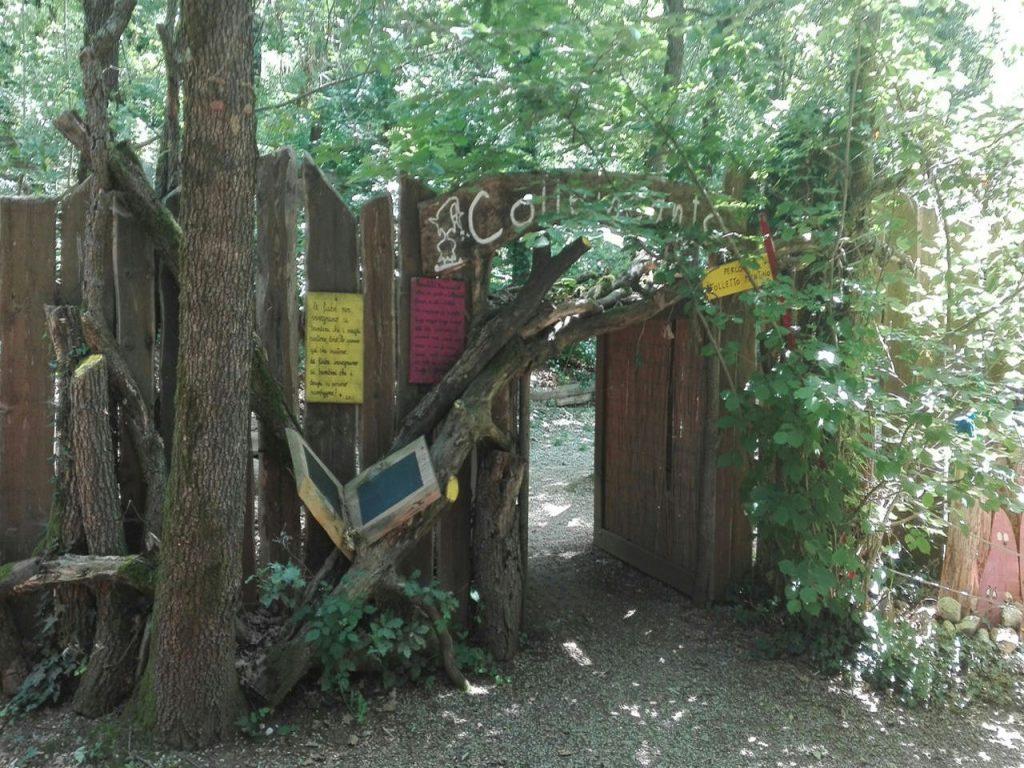 Gita Parco Didattico Colleincanto 2019